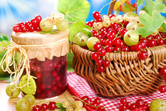 Korg av den nya röda vita vinbäret, krusbäret och kruset av preserv Royaltyfri Foto