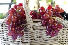 Korg av druvor och vinen Royaltyfri Fotografi
