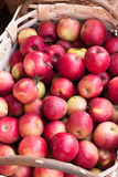 Korg av frukt Fotografering för Bildbyråer