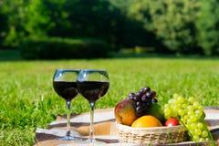 korg av frukt och två exponeringsglas av vin i naturen för avkoppling royaltyfri bild