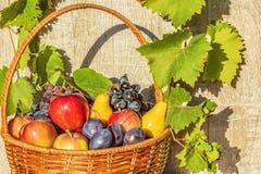 Korg av frukt på en ljus träbakgrund Royaltyfri Foto