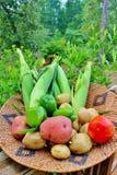 Korg av grönsaken Arkivfoto