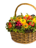 Korg av grönsaker Fotografering för Bildbyråer