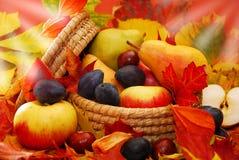 Korg av höstfrukter Arkivbild