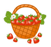 Korg av jordgubbar royaltyfri illustrationer