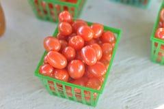 Korg av körsbärsröda tomater Arkivbilder