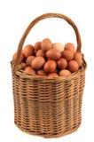 Korg av nya ägg på vit bakgrund royaltyfri foto