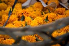 Korg av orange blommor på den traditionella marknaden royaltyfri fotografi