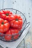 Korg av självodlade röda tomater Royaltyfri Fotografi