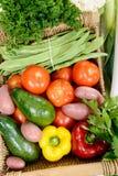 Korg av säsongsbetonade grönsaker på trätabellen Royaltyfri Fotografi