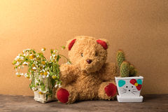 Korg av torra blommor och en nallebjörn med krukor av kaktuns på trätabellen Arkivfoton