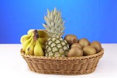 Korg av tropiska frukter Royaltyfri Foto