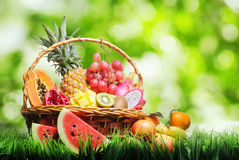 Korg av tropiska frukter på grönt gräs arkivbilder