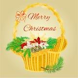 Korg för glad jul med julstjärnavektorn Arkivfoto