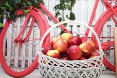 Korg med äpplen på bakgrunden av cykeln Studiogarnering royaltyfri foto