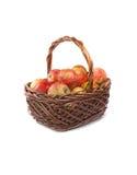 Korg med äpplen på vit bakgrund Royaltyfri Foto