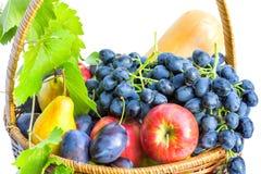 Korg med frukt på en vit bakgrund Arkivbilder