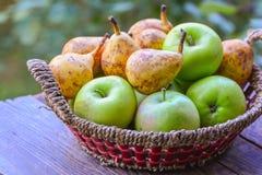 Korg med frukter Arkivfoto