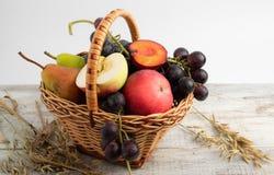korg med fruktplommonet, druvor, äpple, päron royaltyfri bild