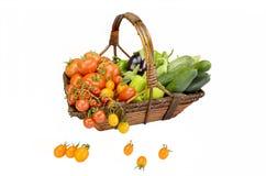 Korg med grönsaker Royaltyfri Bild