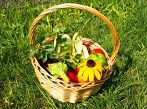 Korg med grönsaker Arkivfoton