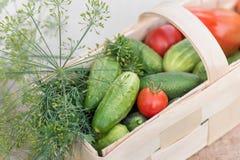 Korg med grönsaker som dekoreras med dill Arkivfoton