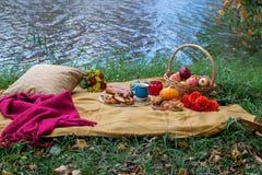 Korg med matbagerit Autumn Picnic arkivfoto