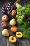 Korg med nektariner, persikor, druvan och päron Arkivfoto