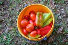 Korg med nya grönsaker Arkivfoto