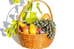 Korg med olik frukt på en vit bakgrund Arkivbild