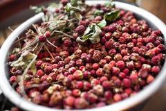 Korg med wild jordgubbar Fotografering för Bildbyråer