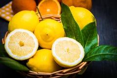korg mycket av den nya citronen Royaltyfria Bilder