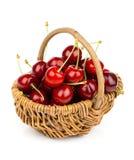 Korg mycket av den nya röda körsbäret Arkivfoto