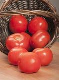 korg spillda tomater Royaltyfria Bilder