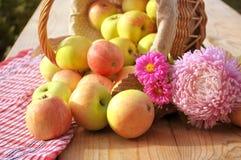 Korgar av äpplen Arkivbilder