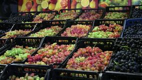 Korgar av druvor på shopparäknaren glidareskott arkivfilmer