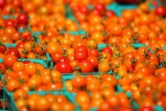 Korgar av körsbärsröda tomater. Arkivfoton
