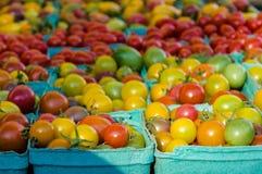 Korgar av mogna körsbärsröda tomater Arkivbild