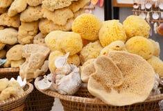 Korgar med naturliga marin- svampar Royaltyfri Fotografi