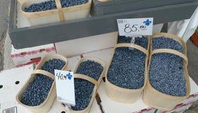korgblåbär Arkivfoto