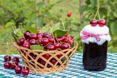 Korgen av körsbär och körsbärsrött driftstopp skorrar på bakgrund av det körsbärsröda trädet Royaltyfri Foto