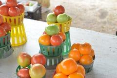 Röda gröna orange tomater Arkivbild