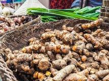 Korgen fyllde med ny gurkmeja som såldes på bondemarknaden arkivfoton