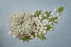 Korgen i form av en blomma, vita tusenskönor utbildar med gröna sidor, turkosbakgrund arkivbilder