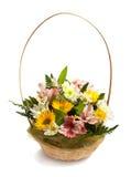 Korgen med fjädrar blommor   Fotografering för Bildbyråer