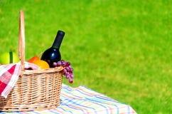 korgfrukter har picknick wine Royaltyfri Bild