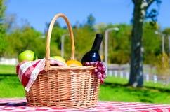 korgfrukter har picknick wine Arkivfoton