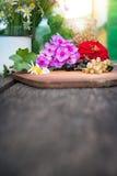 Korinthe mit Blumen an Bord Lizenzfreies Stockbild