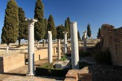 Korinthische Säulen in Italica stockfotos
