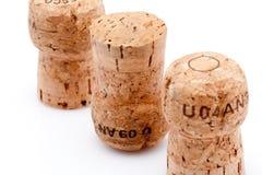 Kork av en wineflaska Royaltyfri Fotografi